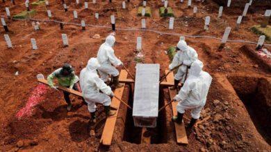 Photo of OMS: los muertos por Covid duplican las cifras oficiales