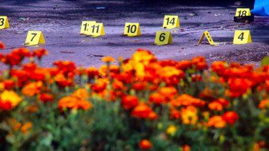 Photo of Masacre al azar en Reynosa: 15 muertos