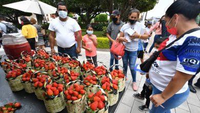 Photo of Así se vivió el Festival de la Fresa 2021 en Irapuato